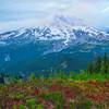 Coming Out Of The Mist Pt 2 Pinnacle Peak Trail, Plummer Peak, Mt Rainier National Park, WA