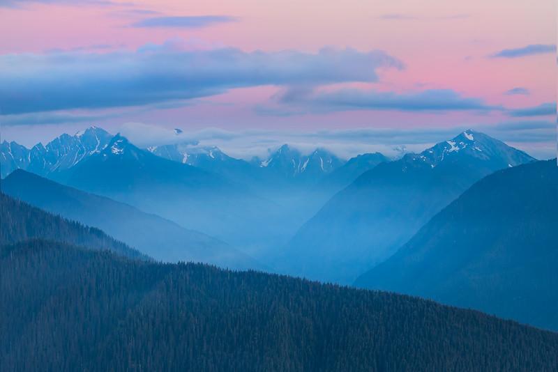 Pink Twilight Over The Range - - Hurricane Ridge, Olympic National Park, WA