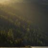 Late Afternoon Warmth On Lake Wenatchee - Lake Wenatchee State Park, Leavenworth, WA