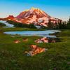 Mixed Rainier Reflections - Spray Park,  Mount Rainier National Park, Washington