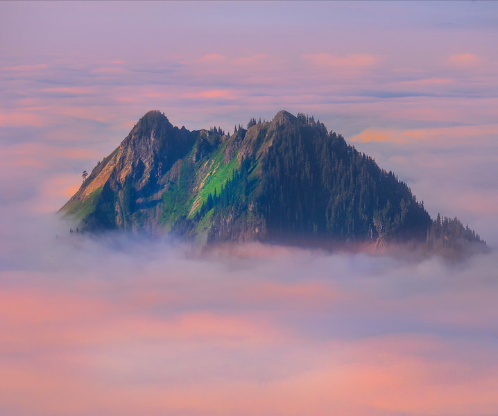 Island In The Sky With Pink Clouds_Mount Rainier National Park_Washington