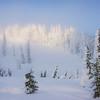 Hints Of Light Through Fog - Paradise Area, Mount Rainier National Park, WA