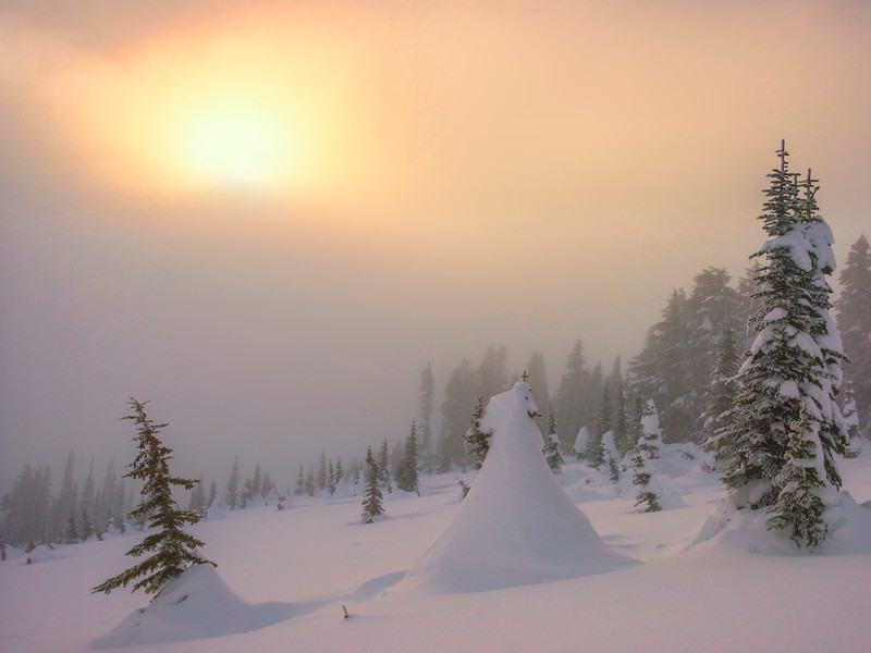 Sun Fog Mystery On Mt Rainier - Paradise Area, Mount Rainier National Park, WA