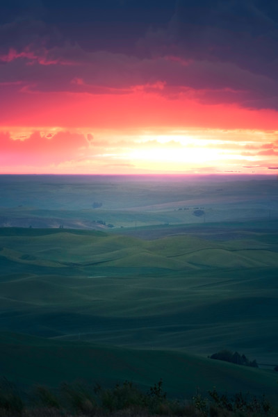 Sunset Glow Over The Rolling Hills - The Palouse Region, Washington