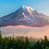 Sunrise Fog Glow_Mount Rainier National Park_Washington