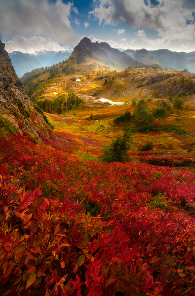 Looking Down Into The Valley Of Color And Light - North Cascades National Park, WA