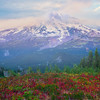 Mt Rainier Coming Out Of The Mist Pinnacle Peak Trail, Plummer Peak, Mt Rainier National Park, WA