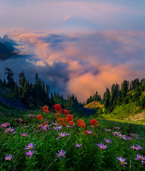 Top Of Pinnacle Peak Saddle_Mount Rainier National Park_Washington