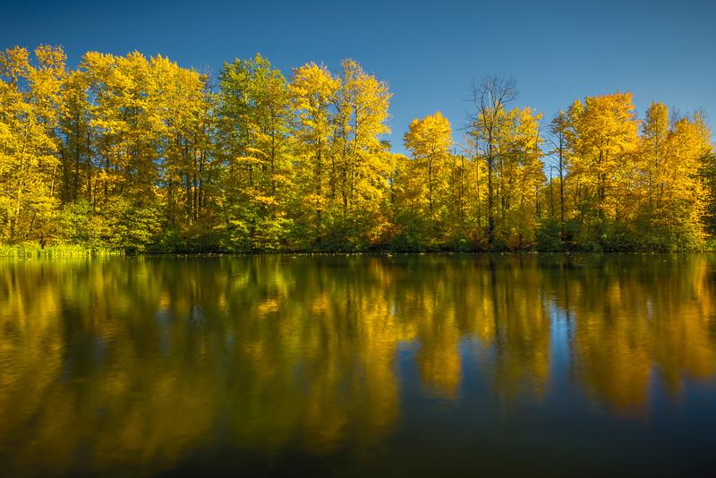Easton Ponds Of Golden Light - Easton Ponds, WA