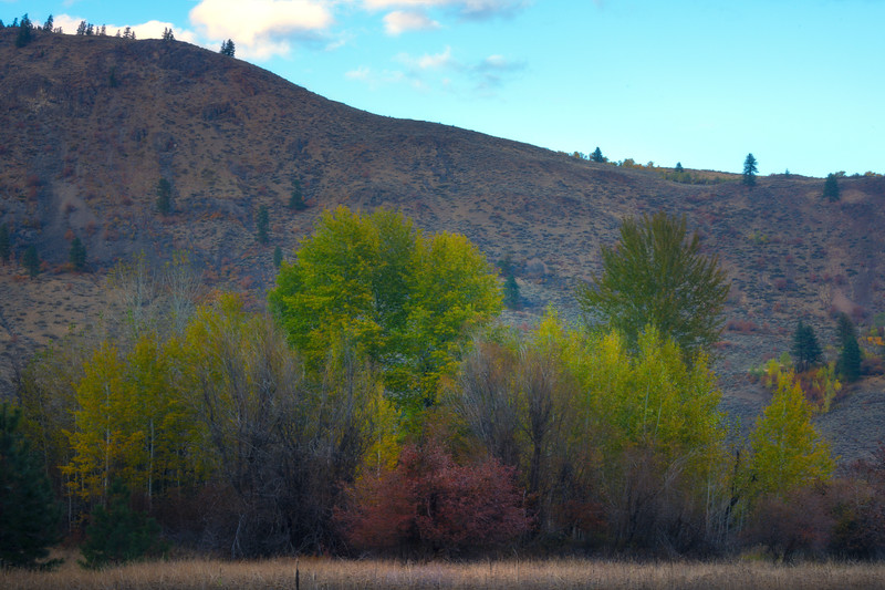 At The Base Of The Hil - Methow Valley, Washington State