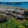 Port Townsend Beach and Dock  - Port Townsend, WA