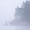 A Misty Morning In Friday Harbor