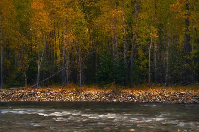 A Dash Of Autumn Along Methow Valley - Methow Valley, Washington State