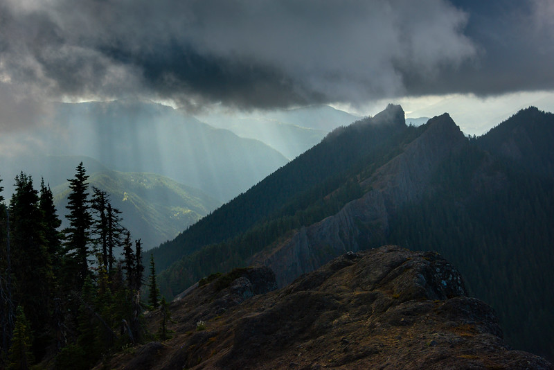 Sun Showers Below In The Valley - Mount Rainier National Park, WA