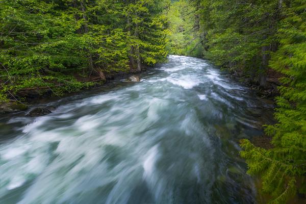 A Bend Along Canyon Creek - Canyon Creek Trail, - Diablo Lake Viewpoint, North Cascades National Park, WA