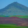 Steptoe Butte From Afar -The Palouse, Eastern Washington And Western Idaho