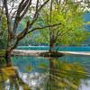 A Hidden Little Getaway - Lake Crescent, Olympic National Park, WA