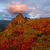 Fall Color Meadow Sunset Looking At Pinnacle Peak Pinnacle Peak Trail, Plummer Peak, Mt Rainier National Park, WA