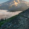 Trail Into Mt Rainier_Mount Rainier National Park_Washington