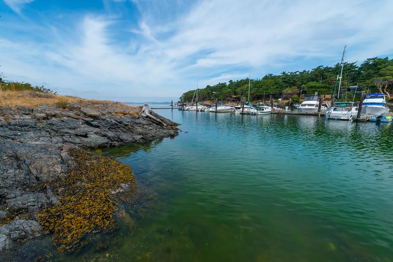 Secluded Cove - Friday Harbor, San Juan Islands, WA