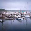 Friday Harbor Marina