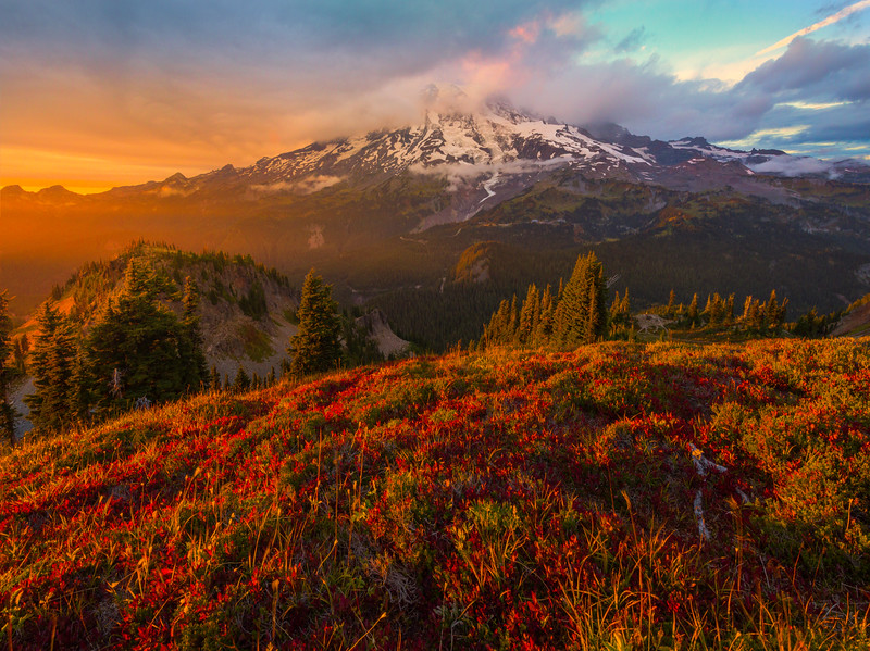 Last Light Falling On Mt Rainier and Meadow Pinnacle Peak Trail, Plummer Peak, Mt Rainier National Park, WA