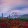 Long Exposure Autumn Mt Rainier - Paradise Side, Mt Rainier National Park, WA