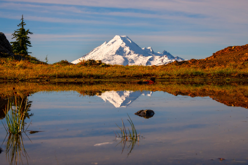 Mt Baker Reflected In A Trail Tarn - North Cascades National Park, WA