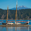 Sailing In Harbour - Alderbrrok Resort & Spa, Union, Washington