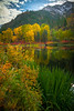 Reflections Of Gold In The Water - Leavenworth, Central Washington, WA