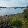 Summer Framing - Lopez Island - San Juan Islands, WA