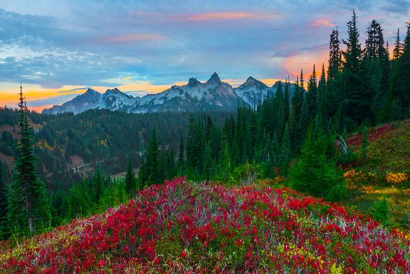 Best Views Of The Tatoosh Range - Paradise Side, Mt Rainier National Park, WA