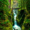 Sol Duc Falls From Ledge In Morning Light Sol Duc Falls, Olympic National Park, WA