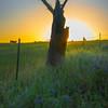 Last Light On The Strange Figure -The Palouse, Eastern Washington And Western Idaho