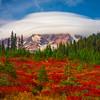 A Weather System Atop Mt Rainier - Paradise Side, Mt Rainier National Park, WA