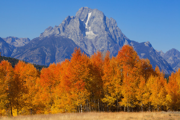 Images from around Wyoming
