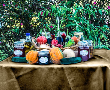 Stock Images--Harvest