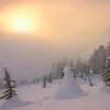 Sun Fog Mystery On Mt Rainier - Paradise Area, Mount Rainier National Park, WA