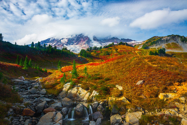Wide Angle Scene Of Mrytle Falls And Mt Rainier
