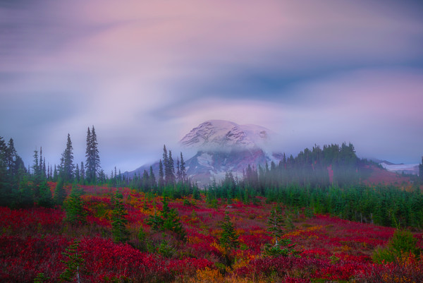 Long Exposure Autumn Mt Rainier