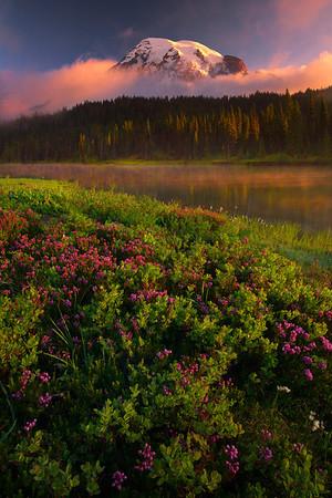 Summer Arrival At Reflection Lakes - Mount Rainier National Park, Washington
