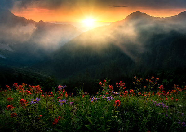 Sunrise Glory From The Top - Mount Rainier National Park, WA