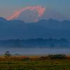 Mt Rainier From Enumclaw - Enumclaw, Washington