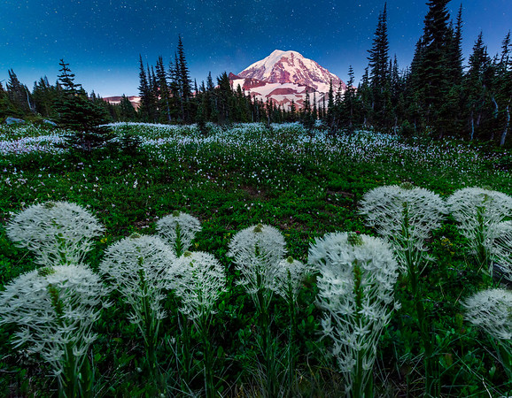 Nightime Skies With Beargras - Spray Park,  Mount Rainier National Park, Washington