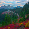 The Path To Wonders Of Color On Mt Rainier