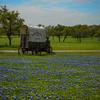The Wagon Wheel In Blue Bonnets - Stonewall, Texas