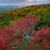 The Blue Ridge Parkway - Great Smoky Mountain Region, North Carolina_16