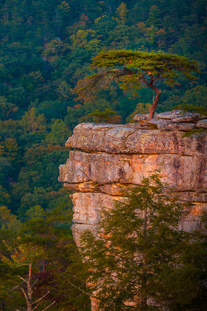 Fall Creek Falls State Park - Tennessee_1