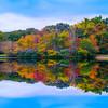 Blue Ridge Parkway - Great Smoky Mountain Region, North Carolina_24