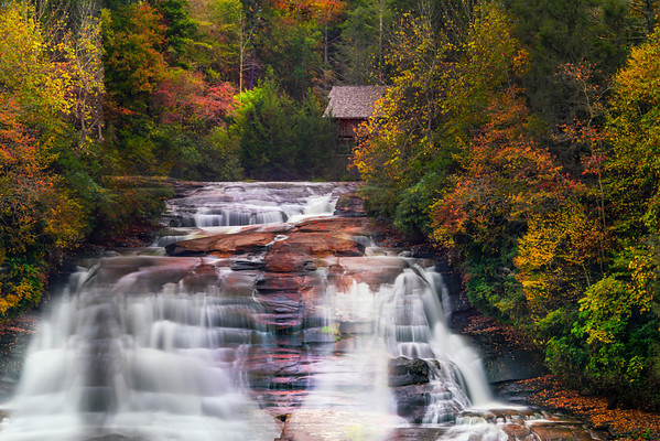 Pisgah National Forest - Great Smoky Mountain Region, North Carolina_18